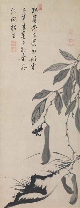 Itō Jakuchū~伊藤若冲筆 無染浄善 (丹崖) 賛 豌豆豆図Be - Classical art