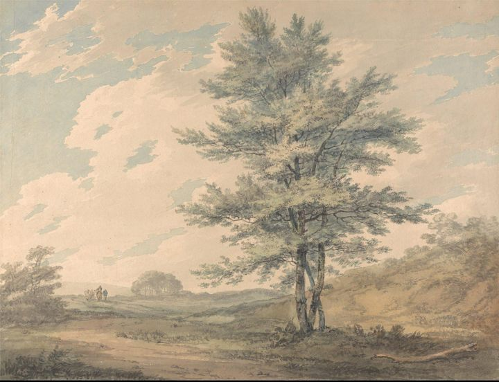 J. M. W. Turner~Landscape with Trees - Classical art