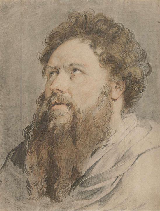 Jacob de Wit~Hoofd van man met baard - Classical art