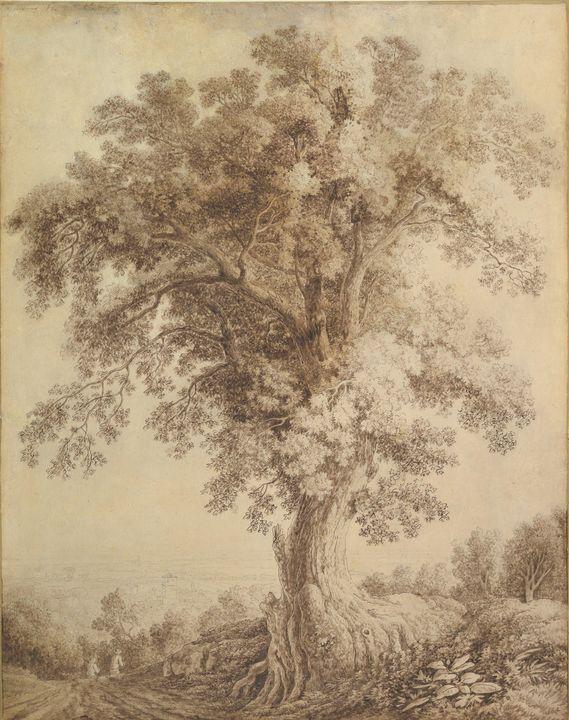 Jacob Philipp Hackert~A Large Tree a - Classical art