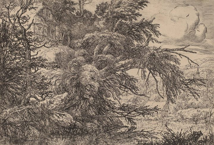 Jacob van Ruisdael~Cottage on a Hill - Classical art