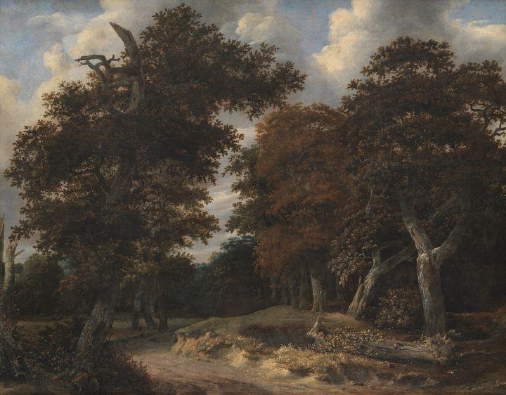 Jacob van Ruisdael~Road through an O - Classical art