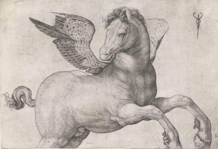 Jacopo de' Barbari~Pegasus - Classical art