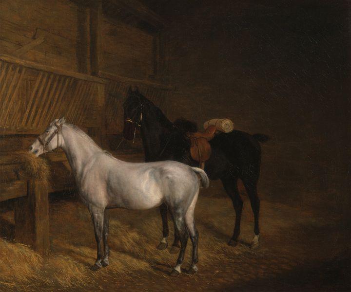 Jacques-Laurent Agasse~A Grey Pony a - Classical art