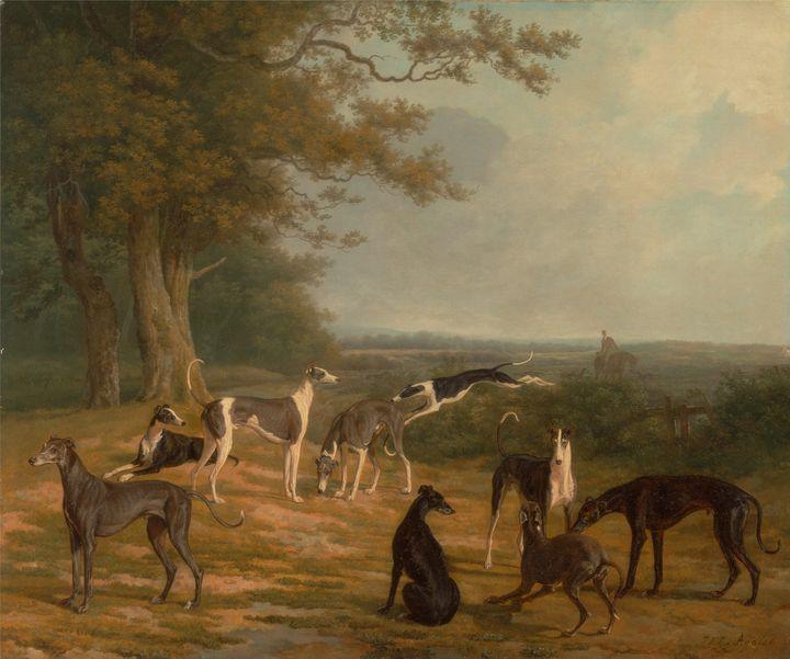Jacques-Laurent Agasse~Nine Greyhoun - Classical art