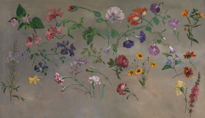 Jacques-Laurent Agasse~Studies of Fl - Classical art