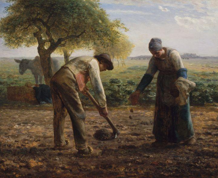 Jean-François Millet~Potato Planters - Classical art