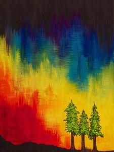 Rainbow Redwoods