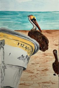 Pelican Pointe