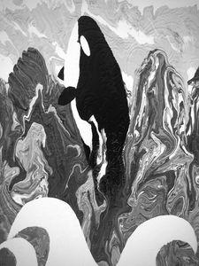 Orca Shore