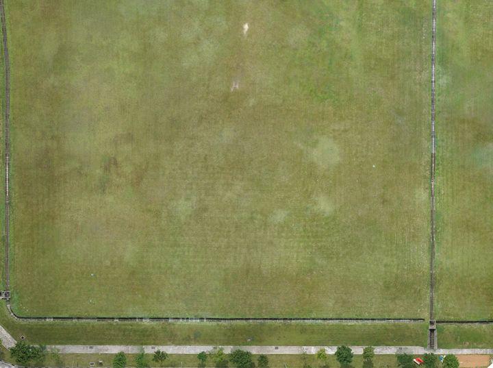 2D Map of Grass Field - Alvin Wong Photography Gallery