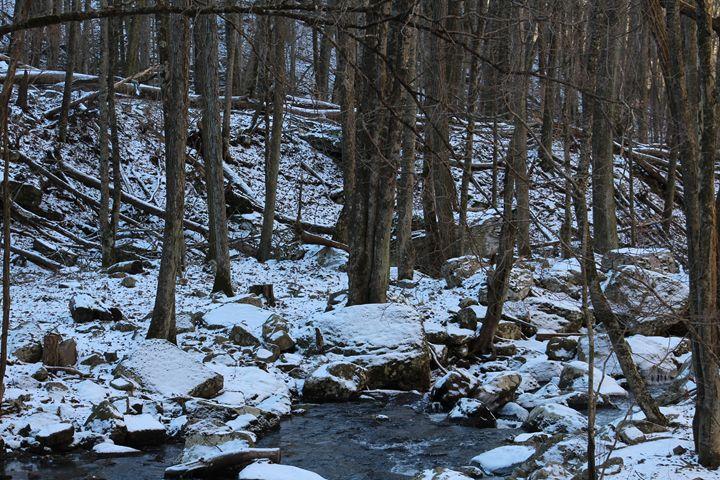Creek Bed of the Cascades - J.T. Arts