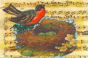 robin in her nest art postcard - sylvia