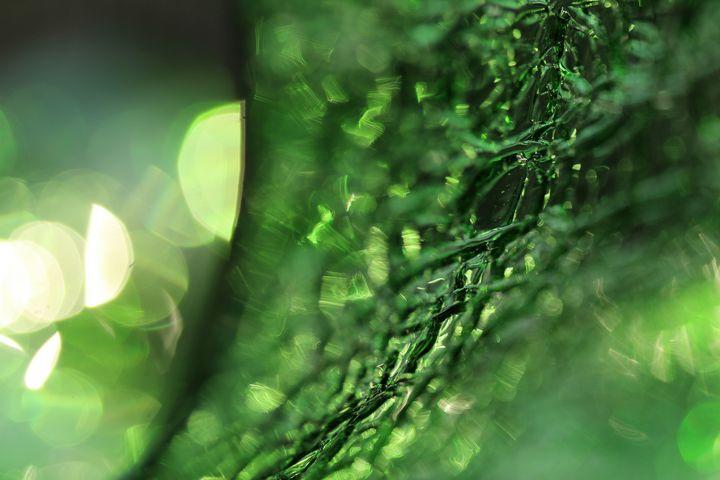 Green Glass 3363 - 50m30n3-3153