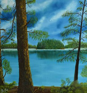 Beauty of Adirondack - Sofic art