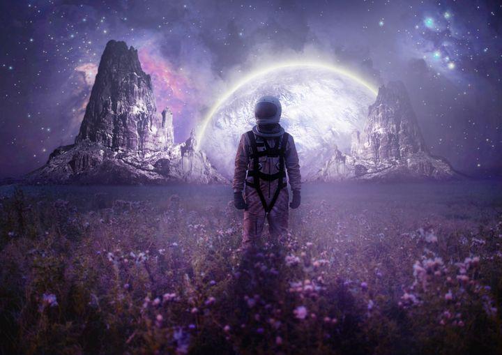 Purple Space - mtforlife66