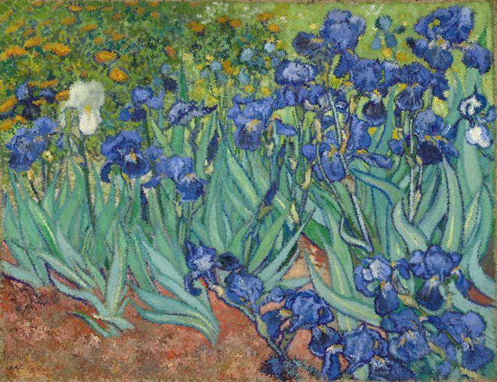 Irises Claude Monet - Alexander Del Rey