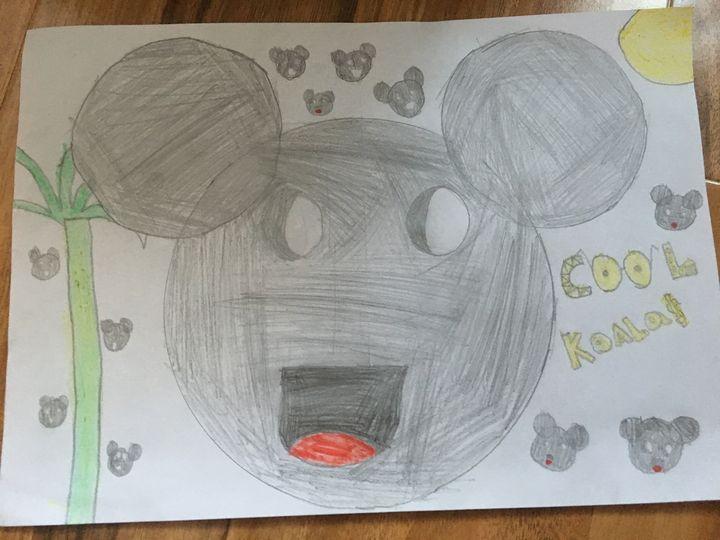 Koala - Kevin's Gallery
