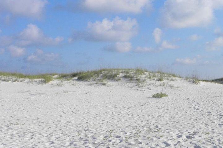 Beach - Jessica Free