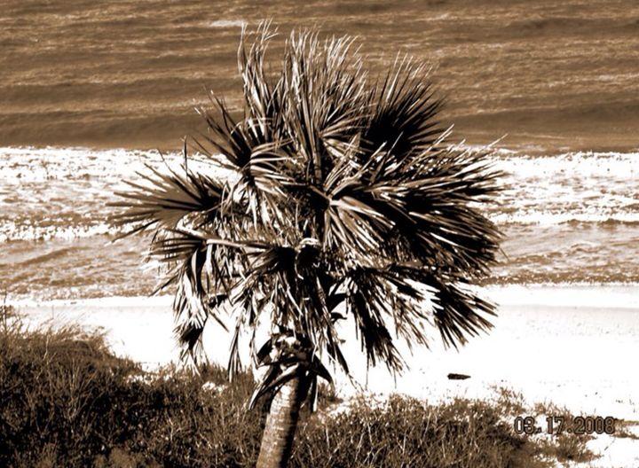 Sepia Palm - Jessica Free