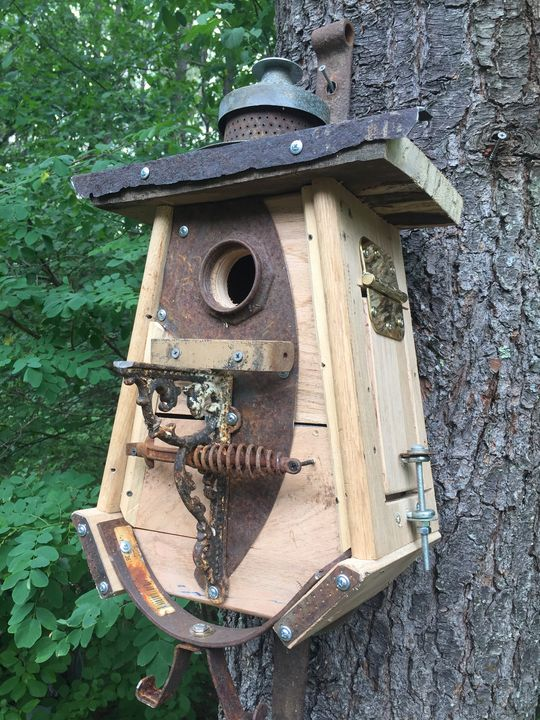 Birdhouse- SQUIRREL PROOF - www.derryllb.com