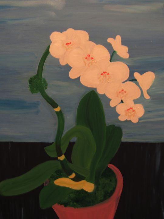 Orchid Flowers - MarilynTye