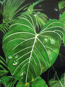 Mystery of dew & leaf