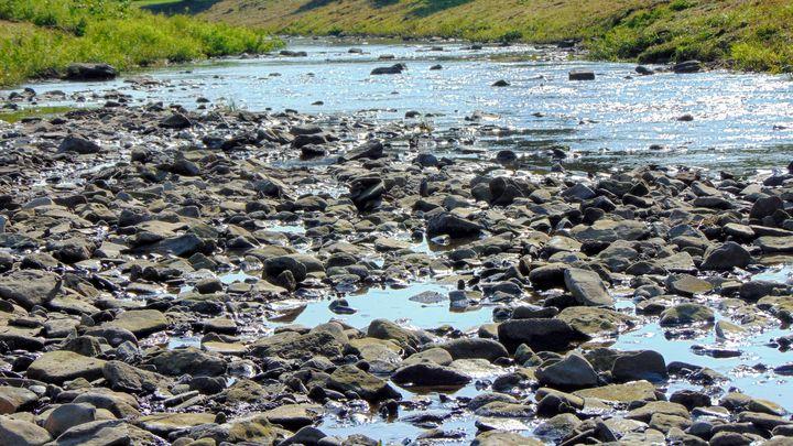 By the river - God's Splendor