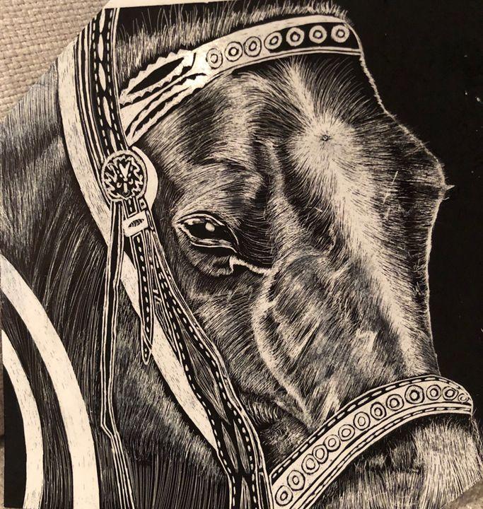 Central Park Horse - Punnet's scratchboard