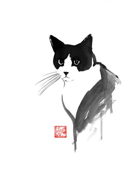 stray cat - pechanesumie