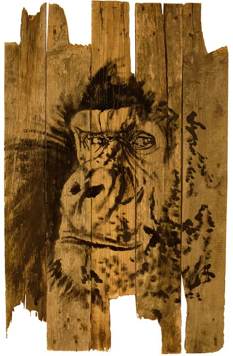 gorilla on wood - pechanesumie