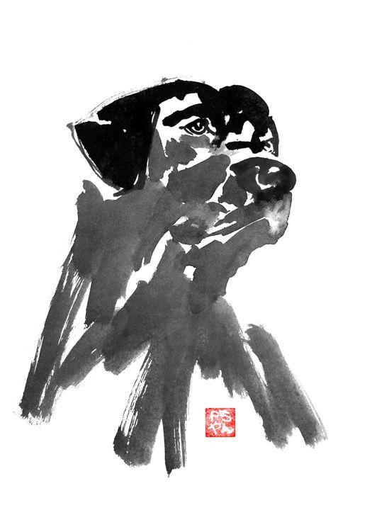 black dog - pechanesumie