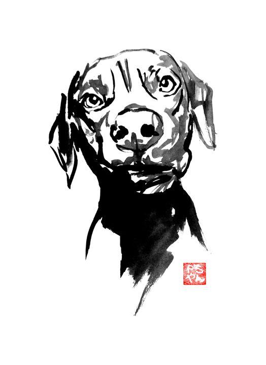 dog's face - pechanesumie
