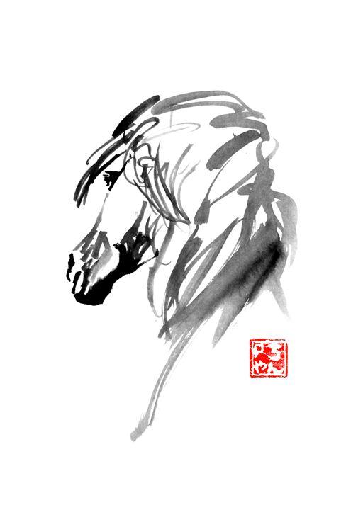 white horse - pechanesumie