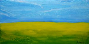 CANOLA  FIELDS  A