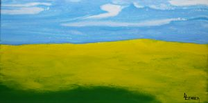 CANOLA FIELDS  B