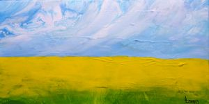 CANOLA  FIELDS  C