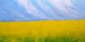 CANOLA  FIELDS  D
