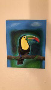 Parrot Ice