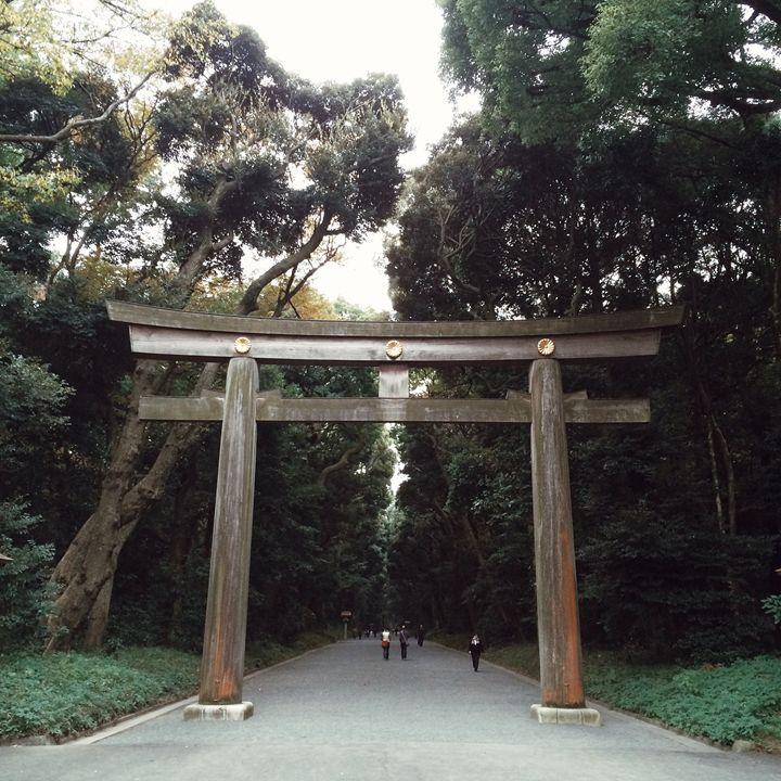A walk through Japan - Madeline Rose