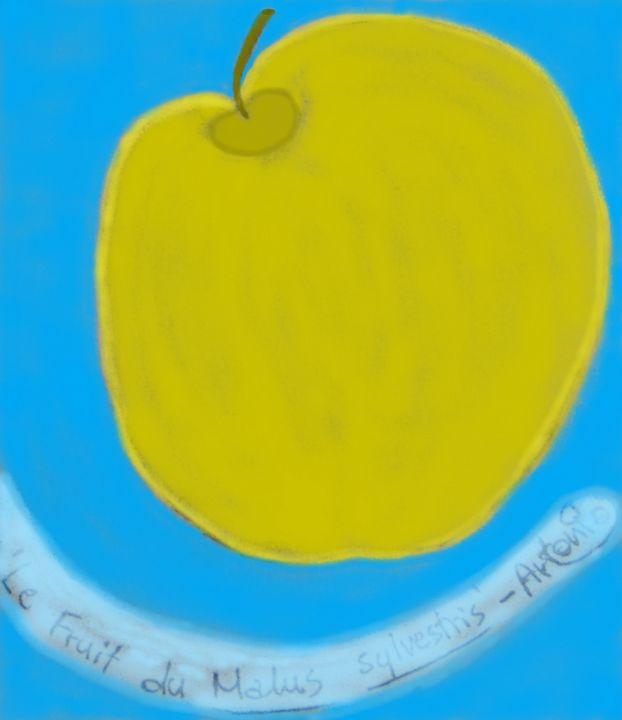Le fruit du Malus sylvestris - Artonio