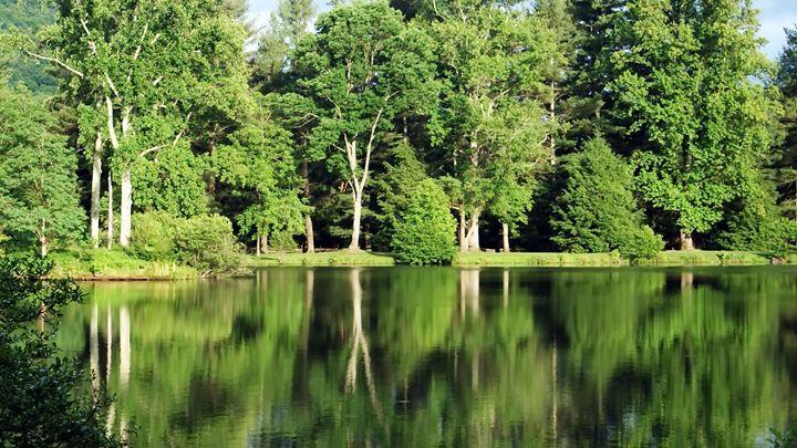 Lake Eden - Twisted Perspektive