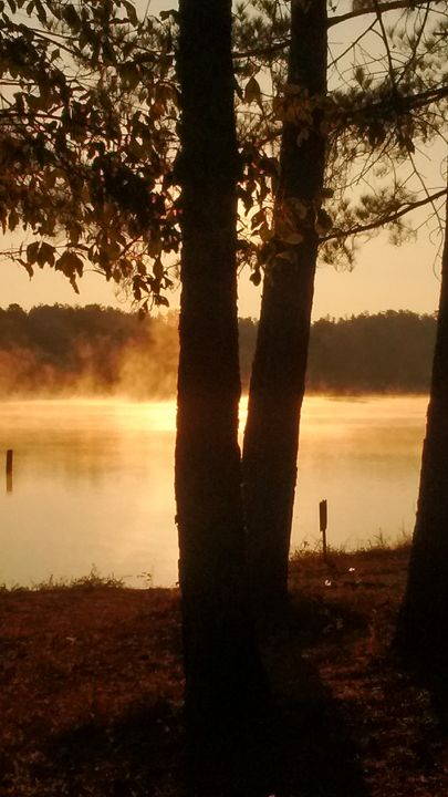 Sherbert Sunrise - Twisted Perspektive