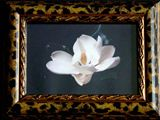"4""x6"" framed magnolia photo"