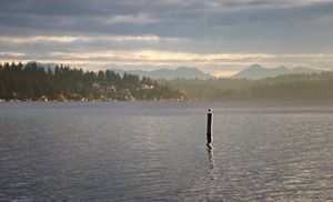 Morning Mist on Lake Washington