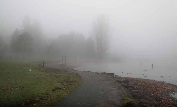 Fog by Lake Washington - David's Gallery