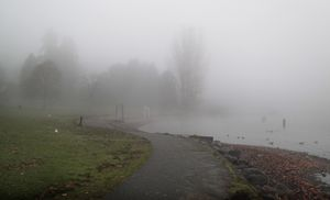 Fog by Lake Washington
