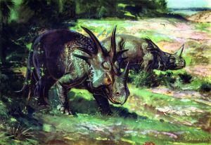 Styracosaurus - SPCHQ