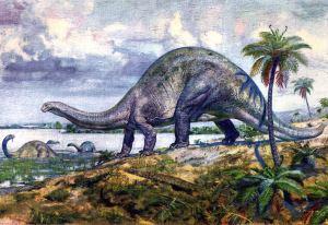 Brontosaurus - SPCHQ