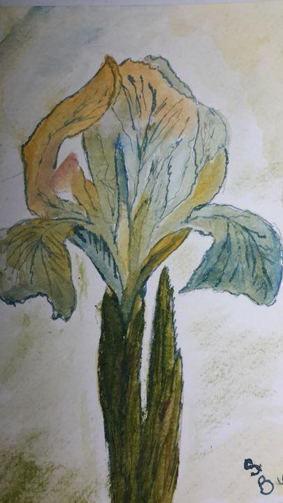 watercolor iris - Love of art